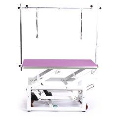 Pedigroom Pro Electric Dog Grooming Table Purple