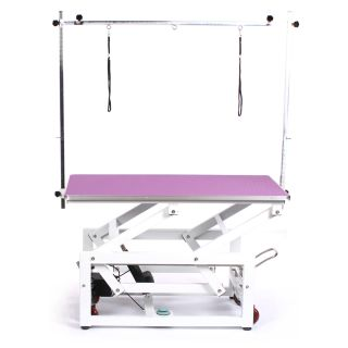 Pedigroom Pro Electric Dog Grooming Table Purple