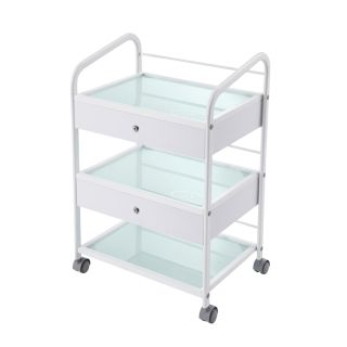 Classic Grooming Salon Trolley White with 2 Drawers